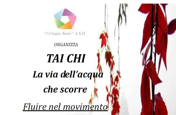: TAIJI - la via dell